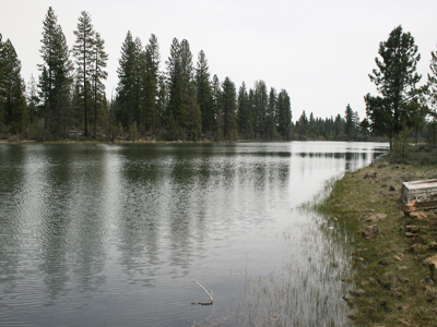 East view of Kramer bass pond