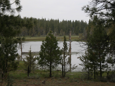 South view of Kramer bass pond