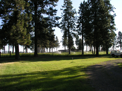 View of the grounds of the RV park